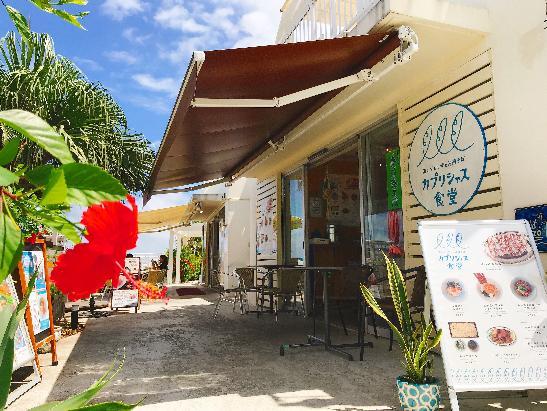 海とギョウザと沖縄そば カプリシャス食堂画像