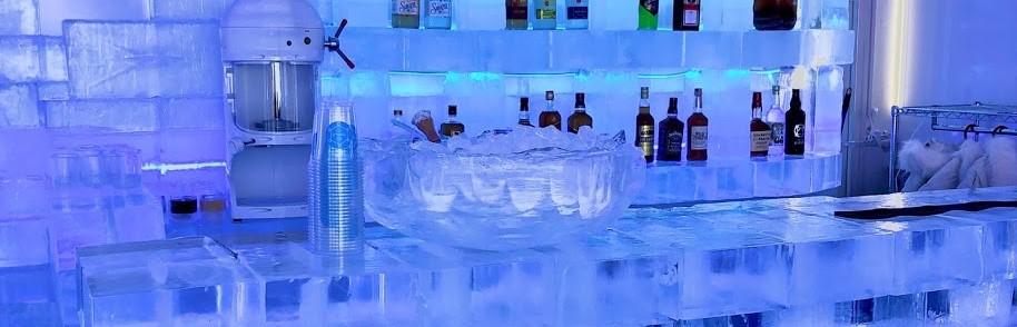 ICE TERRA©E画像